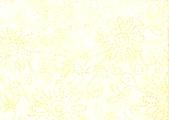<h5>0551</h5><p></p>